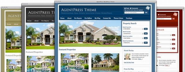 professional Real Estate wordpress Themes picture