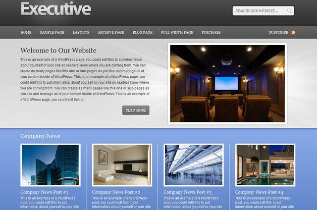 professional corporate wordpress theme