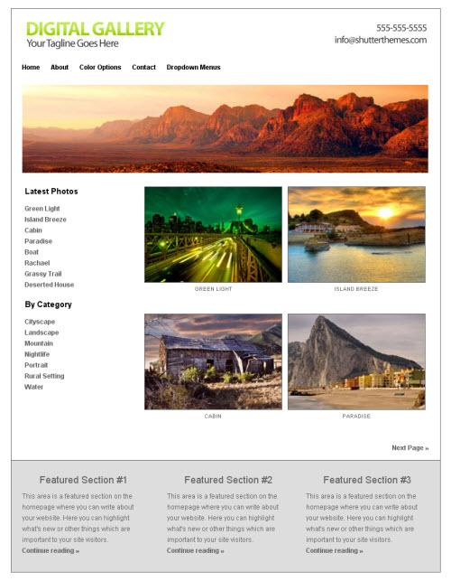 Digital Gallery White WordPress Theme