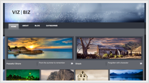 iThemes Viz Biz WordPress Theme