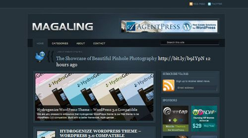 Free-WordPress-Theme-Magaling