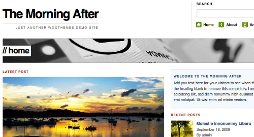Free-WordPress-Theme-WooThemes – The Morning After