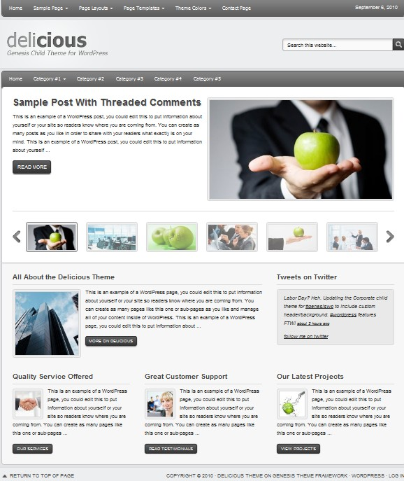 clean cms wordpress themes