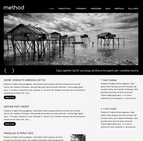 method cms wordpress theme