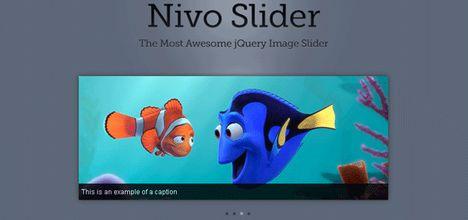nivo_slider