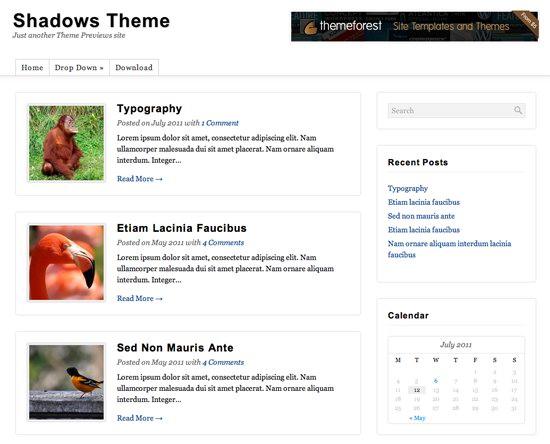 Shadows WordPress Theme