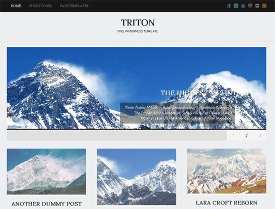 Triton Lite WordPress Theme